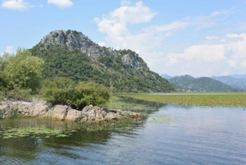 Скадарское озеро. Черногория. Лучшие места для отдыха.